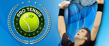 Pro Tennis 2017 Small Banner